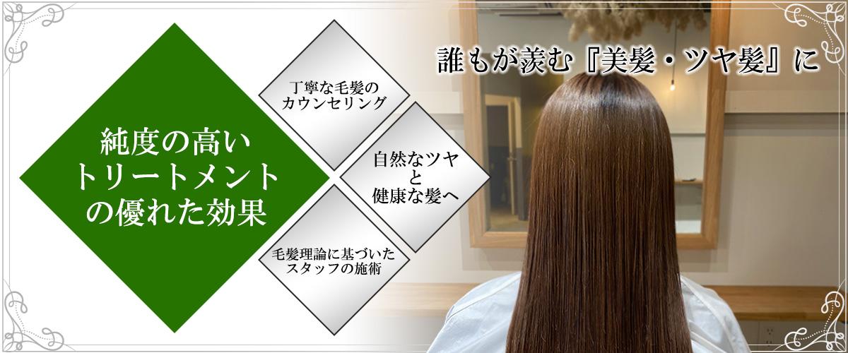 毛髪改善トリートメント